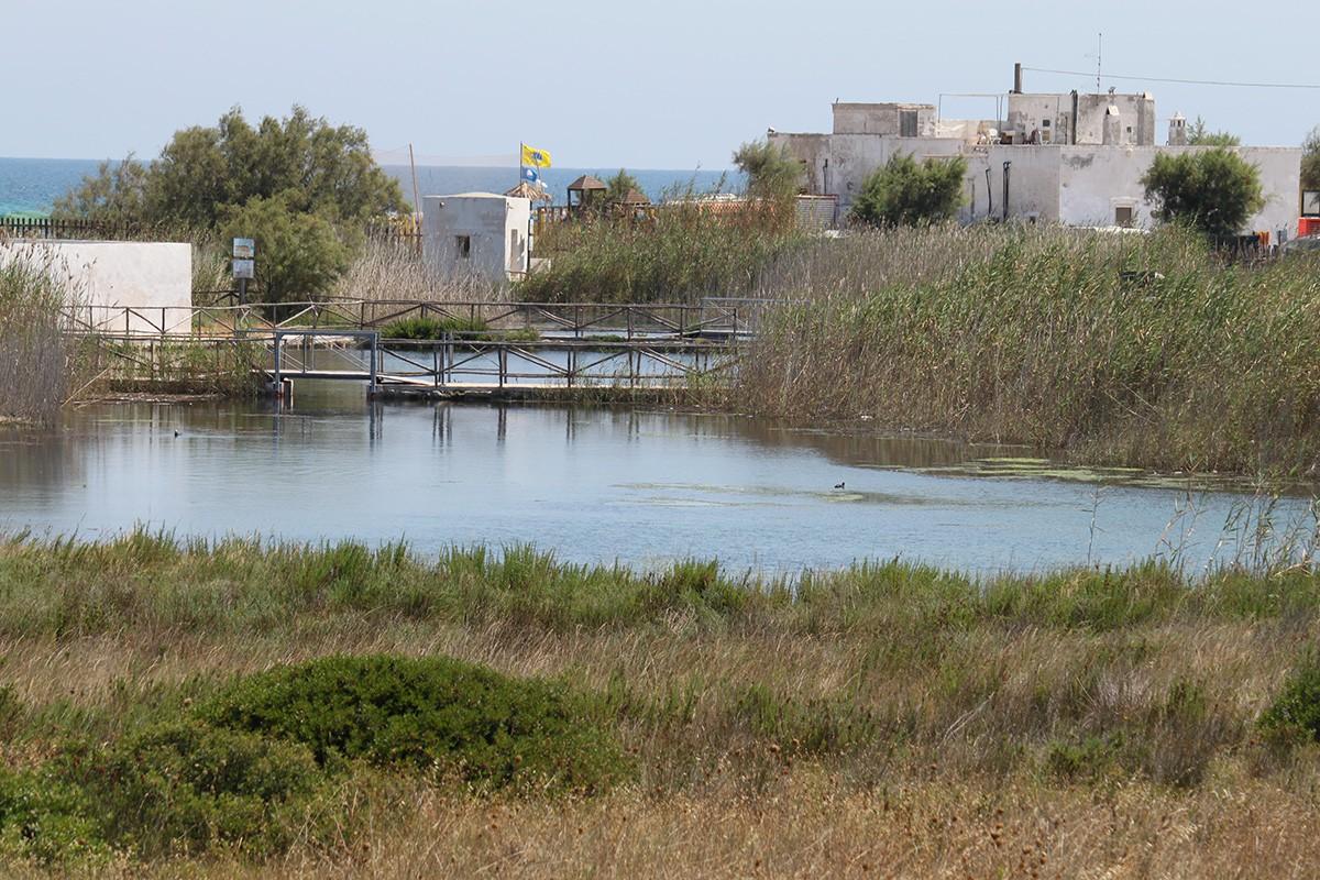 Fiume Morelli (impianto di acquacoltura)